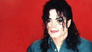 Michael's Estate Updates FAQ