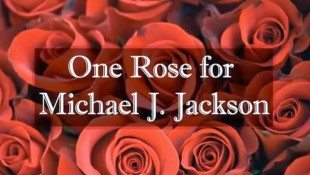 One Rose For Michael 2014