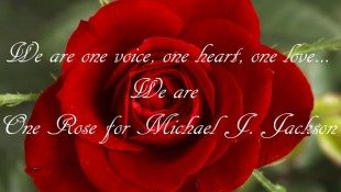 Multilingual 'One Rose For Michael'